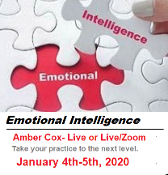 Emotional Intelligence 2 day Course with Amber Cox.